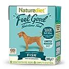 Naturediet Feel Good Fish Complete Wet Food 390g x 18