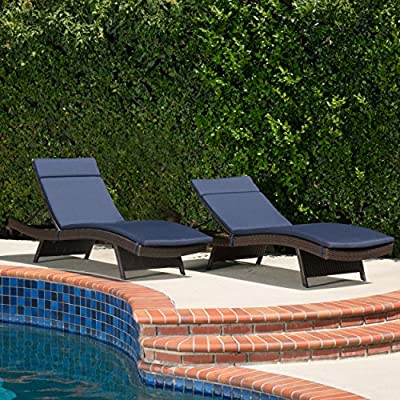 Christopher Knight Home 295933 Lakeport Patio-Chaise-lounges