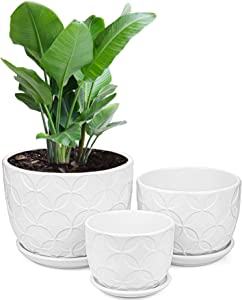 Yesland Ceramic Plant Pots - Circle Planters with Connected Saucer - Small to Medium Size Garden Flower Pots for Succuelnt and Little Snake Plants, Set of 3