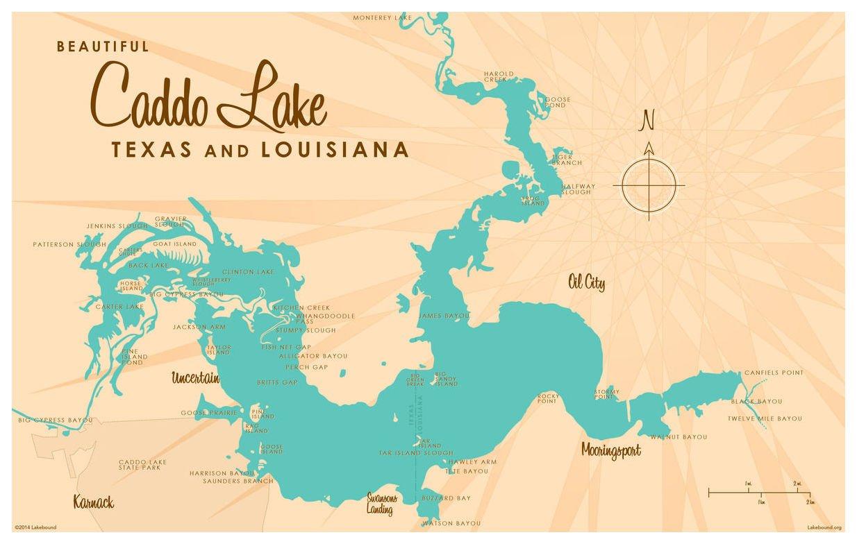 Amazon.com: Caddo Lake TX Louisiana Map Vintage-Style Art Print by on