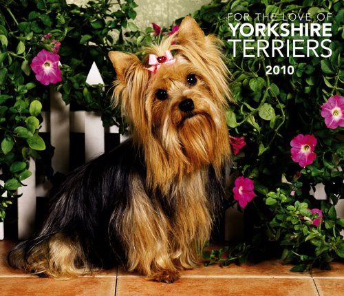 Yorkshire Terriers, For the Love of 2010 Deluxe Wall (Multilingual Edition)
