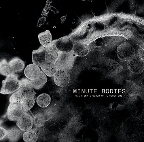 Tindersticks - Minute Bodies: The Intimate World Of F. Percy Smith (2017) [WEB FLAC] Download