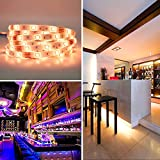 LED Strip Lights Music - DotStone Waterproof RGB