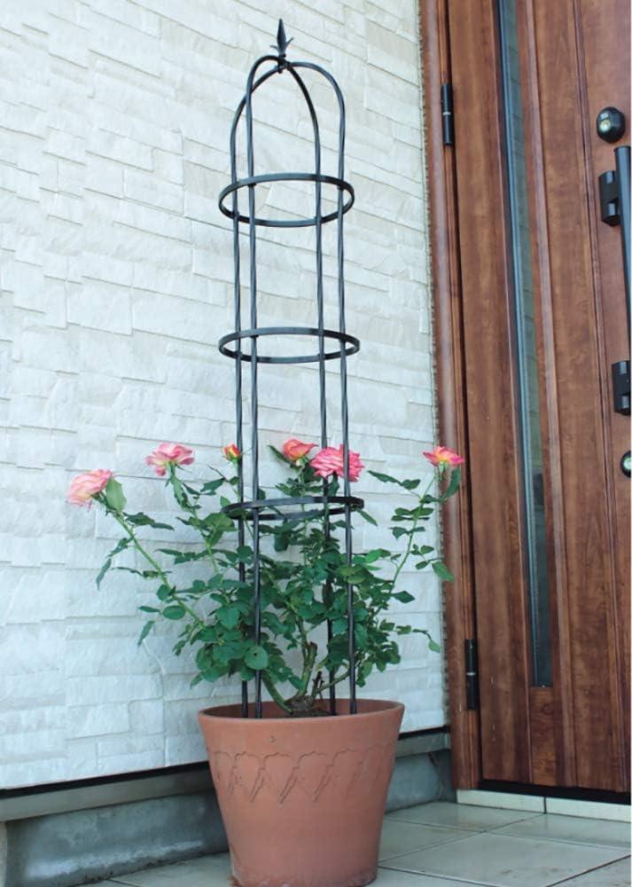 ZHANGZHIYUA Go 3 Packs Garden Obelisk Metal Trellis Flower Support ...
