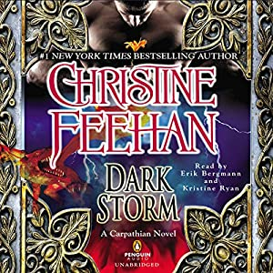 Dark Storm Audiobook