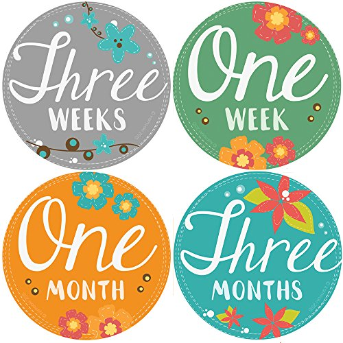 StickNsnap Blooming milestones stickers diameter product image