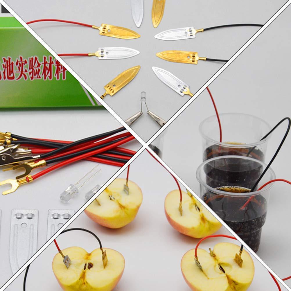 2 Sets of Fruit Power Scientific Experiment Supplies Zinc Copper Electrode Strip Laboratory supplies