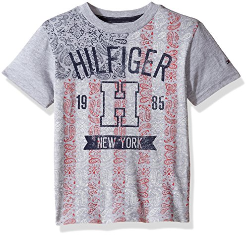 Tommy Hilfiger Denim Men's Little Boys' Short Sleeve Crew Neck Flag Graphic T-Shirt, Grey Heather, Medium/5