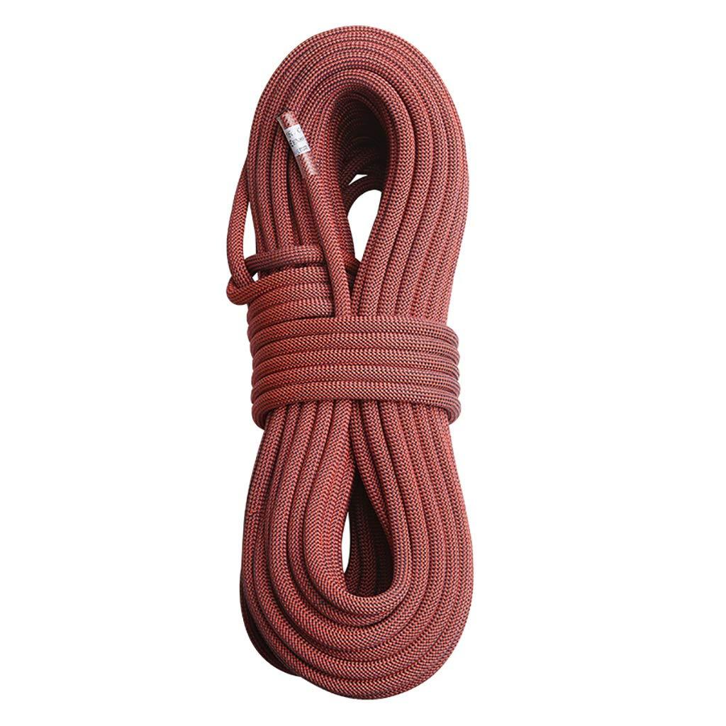- LBYMYB Corde de Descente Vitesse de la Corde d'alimentation diamètre de la Corde 10,5mm Longueur 10-100m Corde d'escalade (Taille   10m) 10m