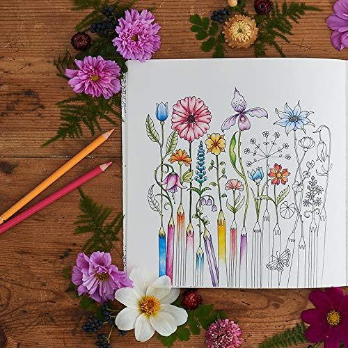 Amazon Com World Of Flowers A Coloring Book And Floral Adventure