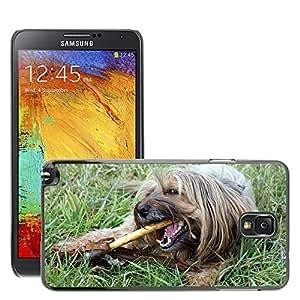 Cas Coq Case Cover // M00148095 Perro Suelo Perro Con Stock Masticar // Samsung Galaxy Note 3 III N9000 N9002 N9005