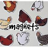 Cute Chicken Decorative Fridge Magnets - Assortment of 8 designs
