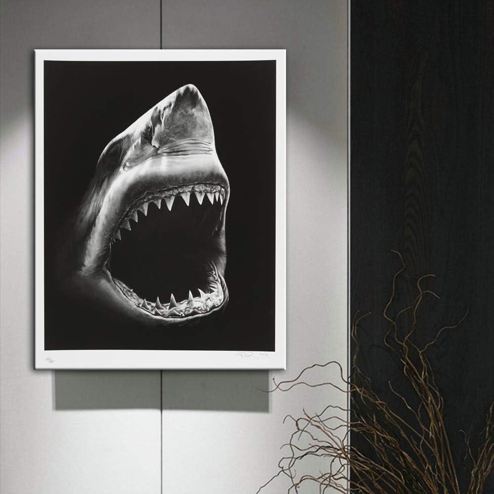 HYLBH Pintura Mural Tibur/ón Pinturas En Lienzo Animales Arte De La Pared Impresiones De La Lona Cuadros Decorativos Arte De La Lona Tiburones Carteles para El Hogar Decoraci/ón De La Pared