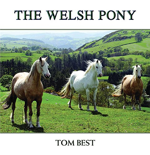 (The History of the Welsh Pony )