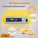 Incubadora para huevos de ave volteo semi-automatico