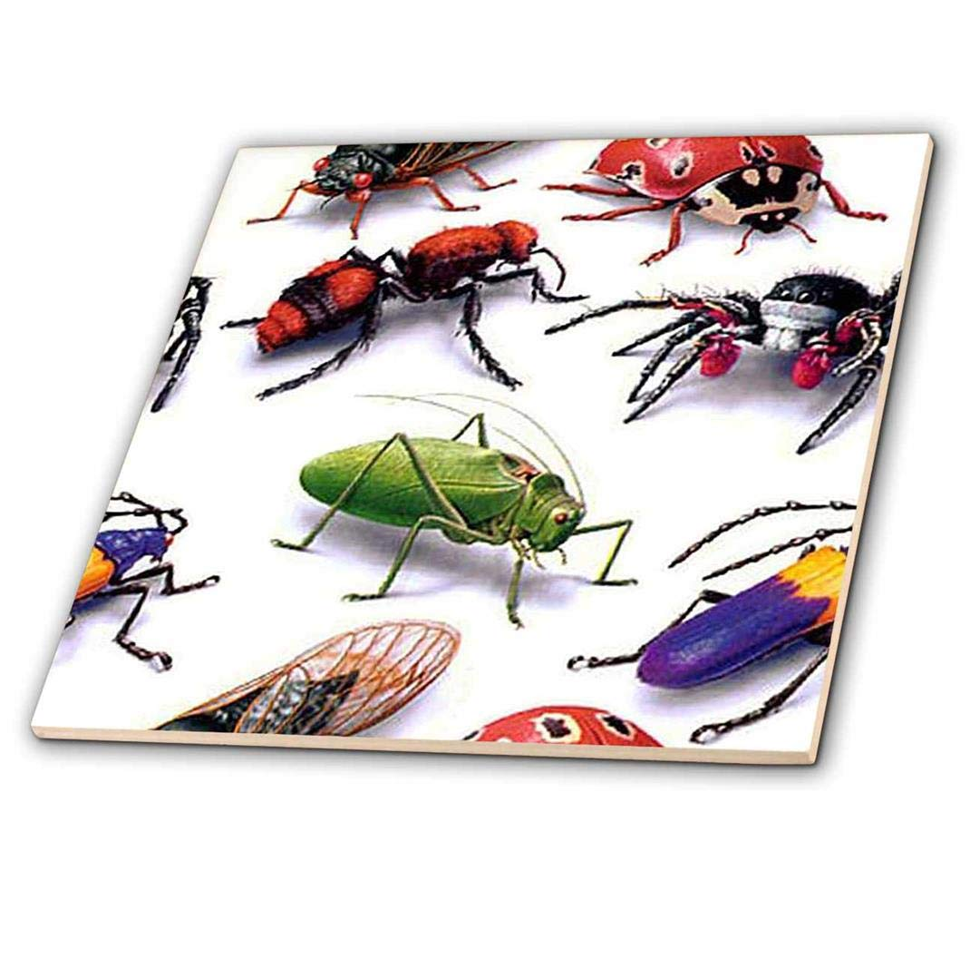 ct/_63052/_3 3dRose Bug Pattern-Ceramic Tile 8
