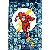 Flash, The: Rogue War