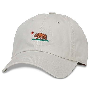 Amazon.com  American Needle California Bear Micro Dad Hat in Stone ... e9552ae048c
