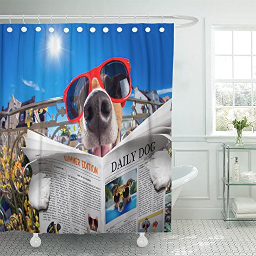Purchase low price VaryHome Shower Curtain Silly Dumb Crazy Jack Russell Dog Portrait Close Fisheye Lens Look Balcony
