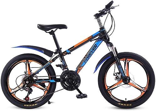 ZLXLX Bicicleta de Montaña Bicicleta 20 Pulgadas 21 Velocidad ...
