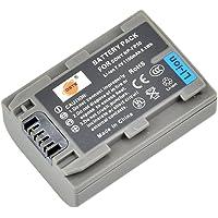 DSTE® NP-FP50 Li-ion Batería para Sony NP-FP30, NP-FP50, NP-FP60, NP-FP70, NP-FP71 and Sony DCR-30, DCR-DVD103, DCR-DVD105, DCR-DVD105E, DCR-DVD202E, DCR-DVD203, DCR-DVD203E, DCR-DVD205, DCR-DVD205E, DCR-DVD304E, DCR-DVD305, DCR-DVD305E, DCR-DVD403, DCR-DVD403E, DCR-DVD404E, DCR-DVD405, DCR-DVD405E, DCR-DVD505, DCR-DVD505E, DCR-DVD602, DCR-DVD602E, DCR-DVD605, DCR-DVD605E, DCR-DVD653, DCR-DVD653E, DCR-DVD703, DCR-DVD703E, DCR-DVD705, DCR-DVD705E, DCR-DVD755, DCR-DVD755E, DCR-DVD803, DCR-DVD803E, DCR-DVD805, DCR-DVD805E, DCR-DVD905, DCR-DVD905E, DCR-DVD92, DCR-DVD92E ...