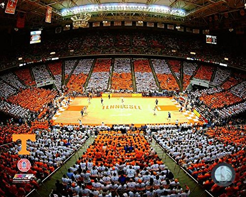 Thompson Bolling Arena Tennessee Volunteers Stadium Photo (Size: 20
