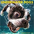 Underwater Dogs 2017 Wall Calendar