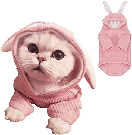 ANIAC Pet Hoodie Cat Rabbit Outfit with Bunny Ears Cute Sweatshirt Spring and Autumn Puppy Knitted Sweater Kitty Soft Knitwear