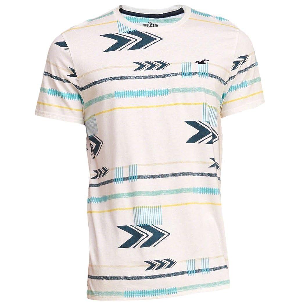 Hollister - Camiseta - Camiseta - Manga corta - para hombre Blanco ...