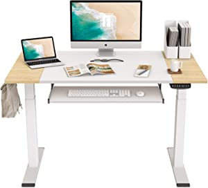 FEZIBO Dual Motor Height Adjustable Electric Standing Desk, 48 x 24 Inch Full Sit Stand Home Office Table with Splice Board, White Frame/Natural and White Top