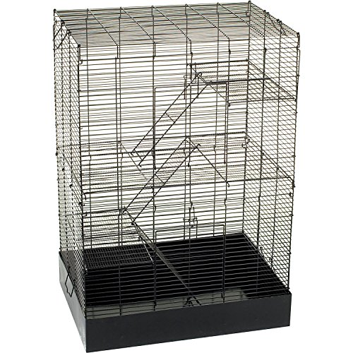 Top 10 best rat wire cage 2019