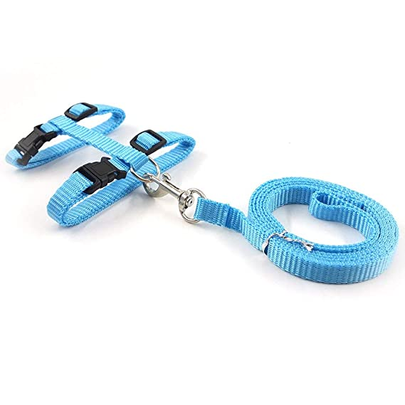 Pet Supplies : Rella Home Adjustable Nylon Cat Harness and Leash Halter Safety Rope Leads (Light Blue), Escape Proof : Amazon.com