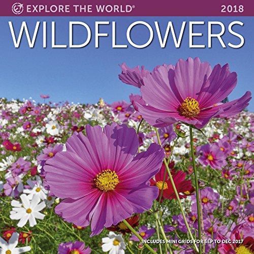 Wildflowers Wall Calendar 2018 (Wall Wildflower)