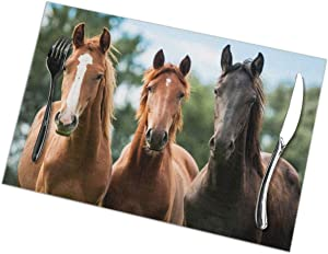 Delerain Young Horses Set of 6 Placemats for Dining Table, Snack Drink Heat Insulation Stain Resistant Anti-Skid Washable Table Mats for Dining Kitchen Restaurant Table, 12 x 18 Inch