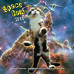 space cats 2017 16 month calendar september 2016 through december 2017