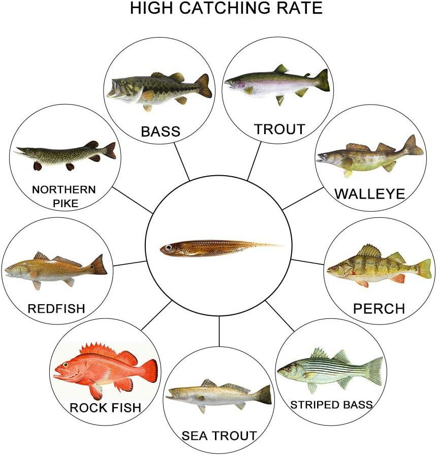 Dr.Fish Lot 6 Fishing Soft Plastic Lures Bass Dropshot Minnow Fishing Bait Needle Tail Smallmouth Fishing Swimbait Kit 3.15in