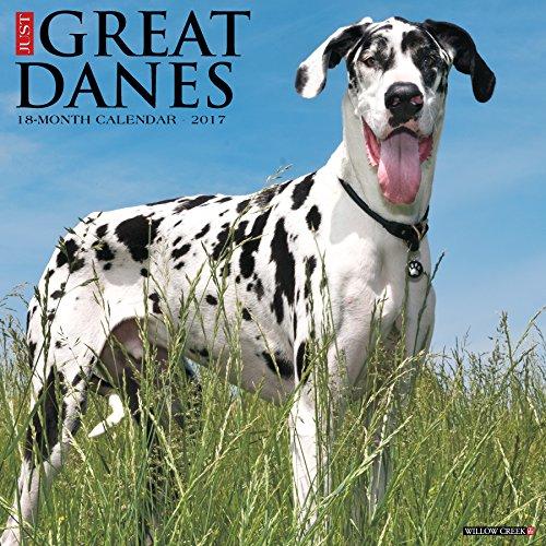 Just Great Danes 2017 Wall Calendar  Dog Breed Calendars