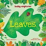 Leaves (Baby Explorer)