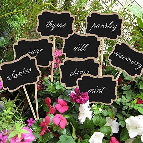 24 Indoor Herb Garden Ideas To Look For Inspiration: Anpatio Pack Of 12 Wooden Chalkboard Herb Garden Plant
