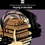 A Macat Analysis of Toni Morrison's Playing in the Dark: Whiteness and the Literary Imagination | Karina Jakubowicz,Adam Perchard