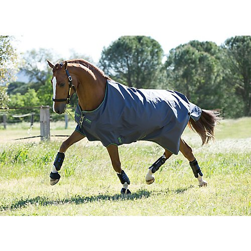 Horseware Amigo Hero 6 Turnout Sheet 78 Black/Purp by HORSEWARE PRODUCTS LTD