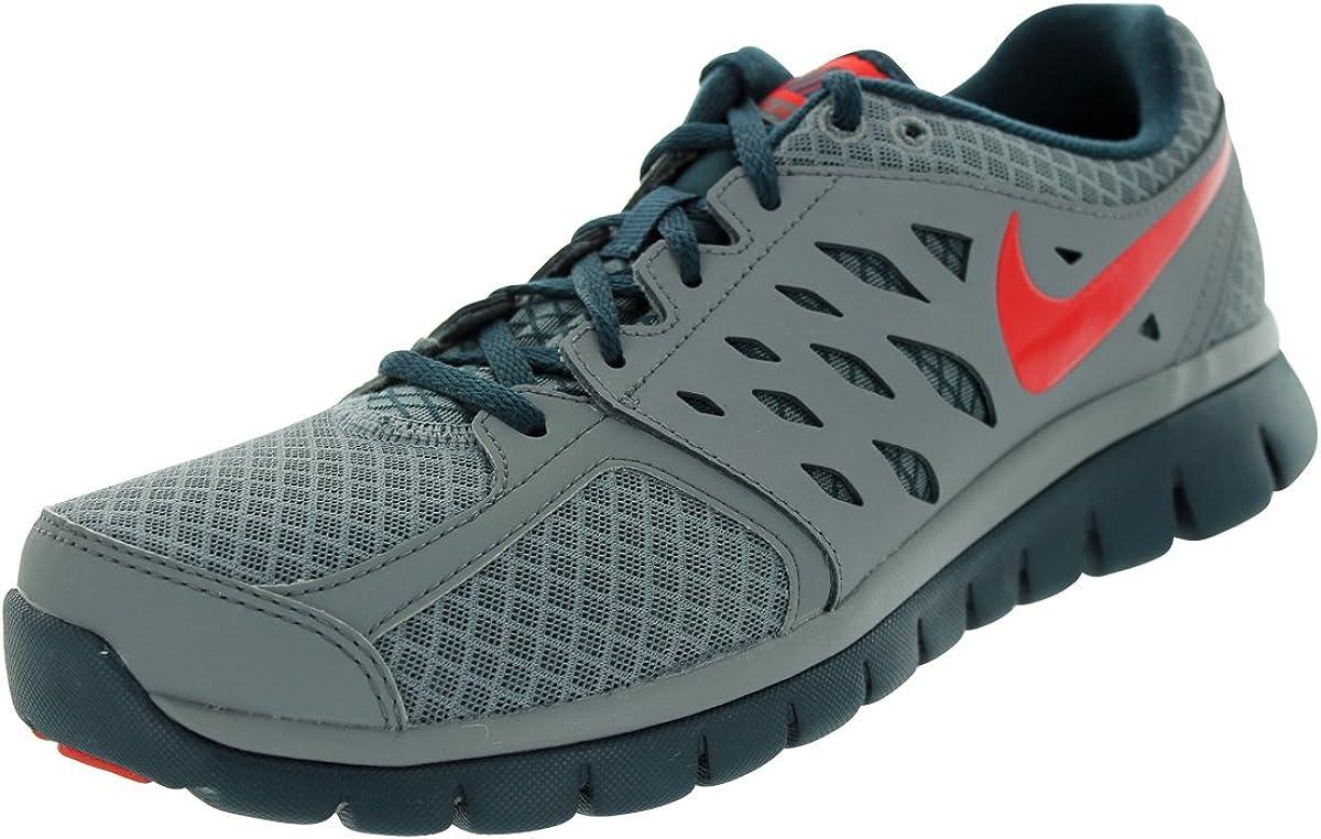 Nike Men's Flex 2013 RN Cool Grey