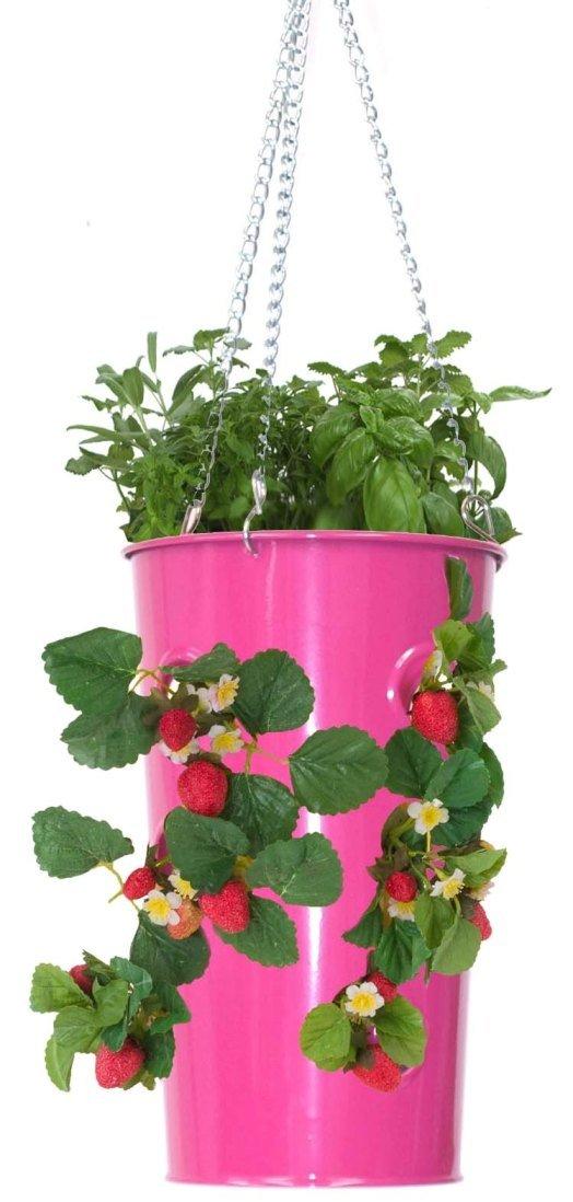 HIT HPK, starker Stahl verzinkt, Erdbeer-Pflanzgefäß, mit Blumenmuster, Hot Pink