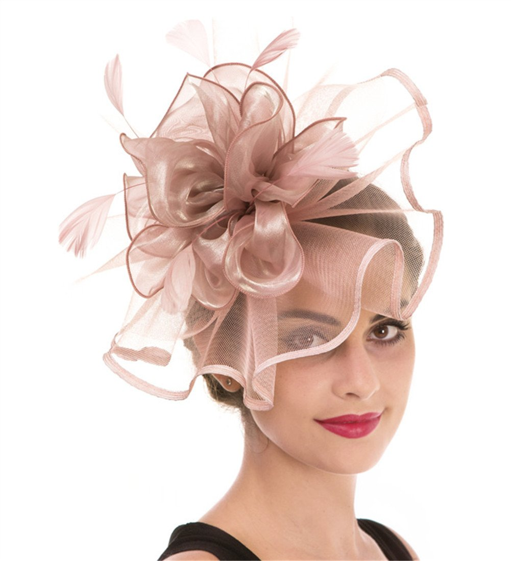 Haojing Fascinator Feather Mesh Flower on a Headband and a Clip Royal Tea Party Derby Headwear for Girls and Women(Hj2-Pink) by Haojing