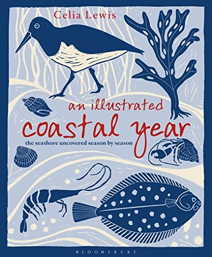 An Illustrated Coastal Year: The seashore uncovered season by season