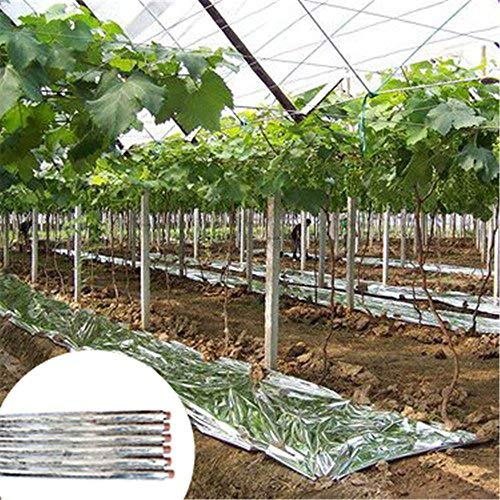 OriginA Greenhouse Reflective Film with Hole,Silver Foil Sheets Reflective Mylar Film Covering Sheets for Plant Fruit Trees Growth,4.9x390ft
