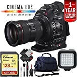 Canon EOS C100 Mark II Cinema Camera + 128GB Extreme SD Card w/24-105mm, Base, International Version