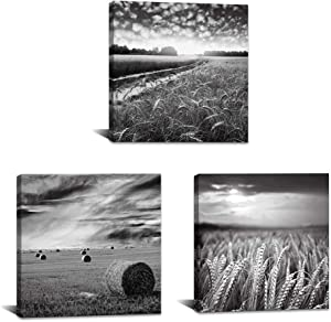3 Piece Canvas Wall Art for Kitchens Black and White Wheat Field Picture Wall Decor Texas Countryside Landscape Painting Modern Home Farmhouse Decoration Stretched and Framed Ready to Hang
