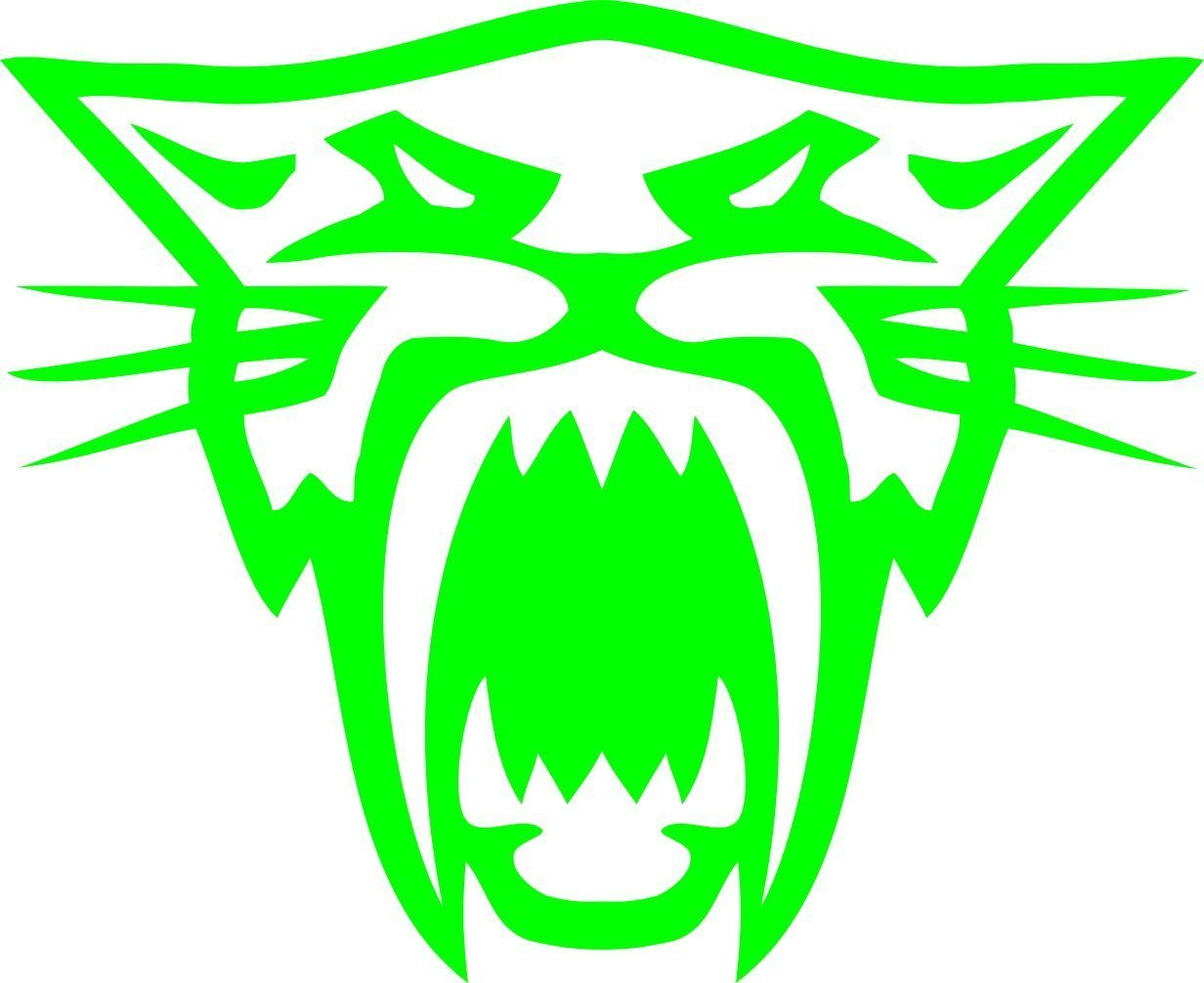 Pair of Arctic Cat Head Decal Sticker (Arctic Cat Green) Decals Express COMINU012909