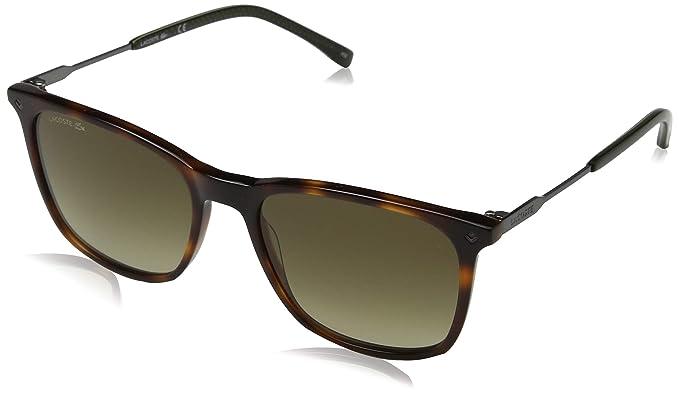 53c3783aacf7b Óculos de Sol Lacoste L870s 214 55 Tartaruga Escuro  Amazon.com.br ...